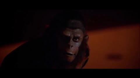 "Conquest of the Planet of the Apes (1972) Caesar's speech ""Where there is fire"" part 5 5"