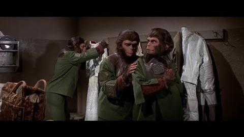 Escape from the Planet of the Apes (1971) Apes dress in captivity