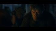 WPOTA Caesar's response to Bad Ape's answer