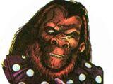 Ape Nation