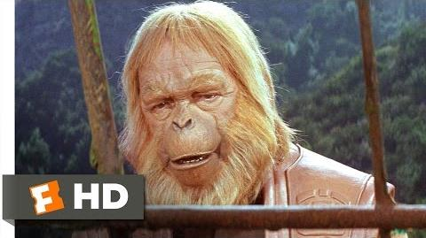 Planet of the Apes (3 5) Movie CLIP - Writing in the Sand (1968) HD