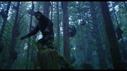 Apes 1