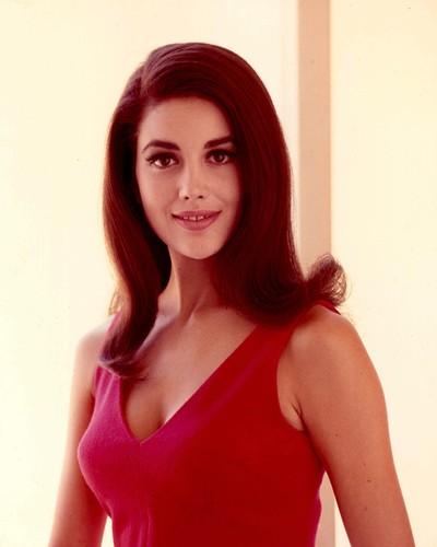 Linda Harrison nova