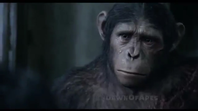 image river criesjpg planet of the apes wiki fandom