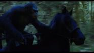 Koba rides Horse