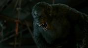 Koba yells at Caesar when he's injured