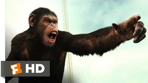 Rise of the Planet of the Apes (4 5) Movie CLIP - Battle for the Bridge (2011) HD