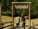 Muir Woods Park
