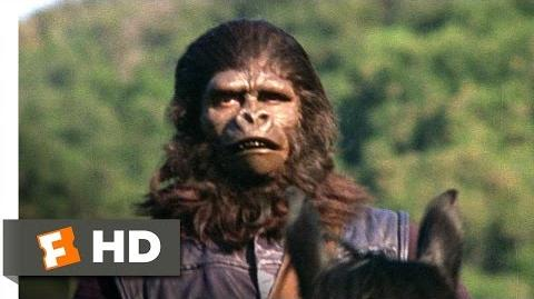 Planet of the Apes (1 5) Movie CLIP - The Human Hunt (1968) HD
