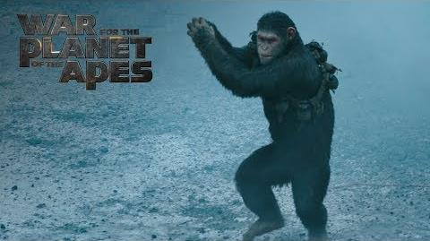 """War for the Planet of the Apes """"Fight"""" TV Commercial 20th Century FOX"""