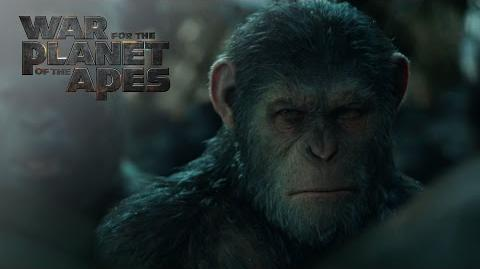 "War for the Planet of the Apes ""Apes Together Strong"" TV Commercial 20th Century Fox"