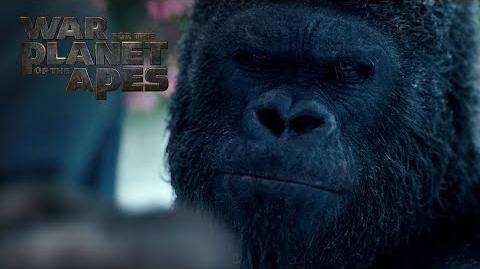 War for the Planet of the Apes Now On Blu-ray 20th Century FOX