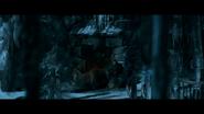 WPOTA Caesar on LO as Bad Ape, Maurice, Nova, Rocket & Luca sleep