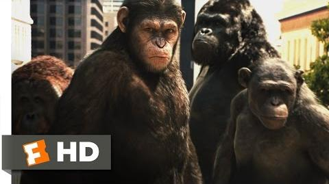 Rise of the Planet of the Apes (3 5) Movie CLIP - Attack on San Francisco (2011) HD
