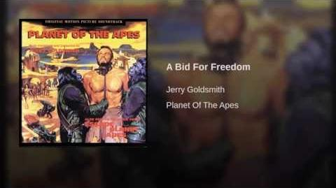 A Bid For Freedom