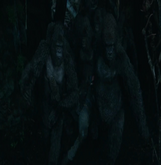 Luca and the Gorilla Guardians