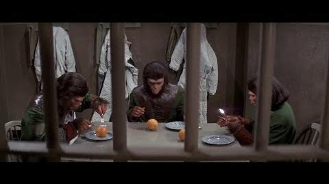 Escape from the Planet of the Apes (1971) Apes given oranges part 2 2