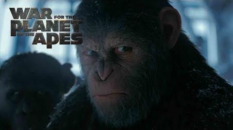 """War for the Planet of the Apes """"Discover The Hero"""" TV Commercial 20th Century FOX"""