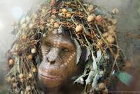 ASC Apes2 Cornelia FacePaint v6 12 21 12