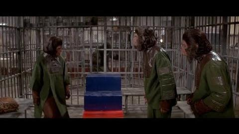 Escape from the Planet of the Apes (1971) Intelligence test part 7 7