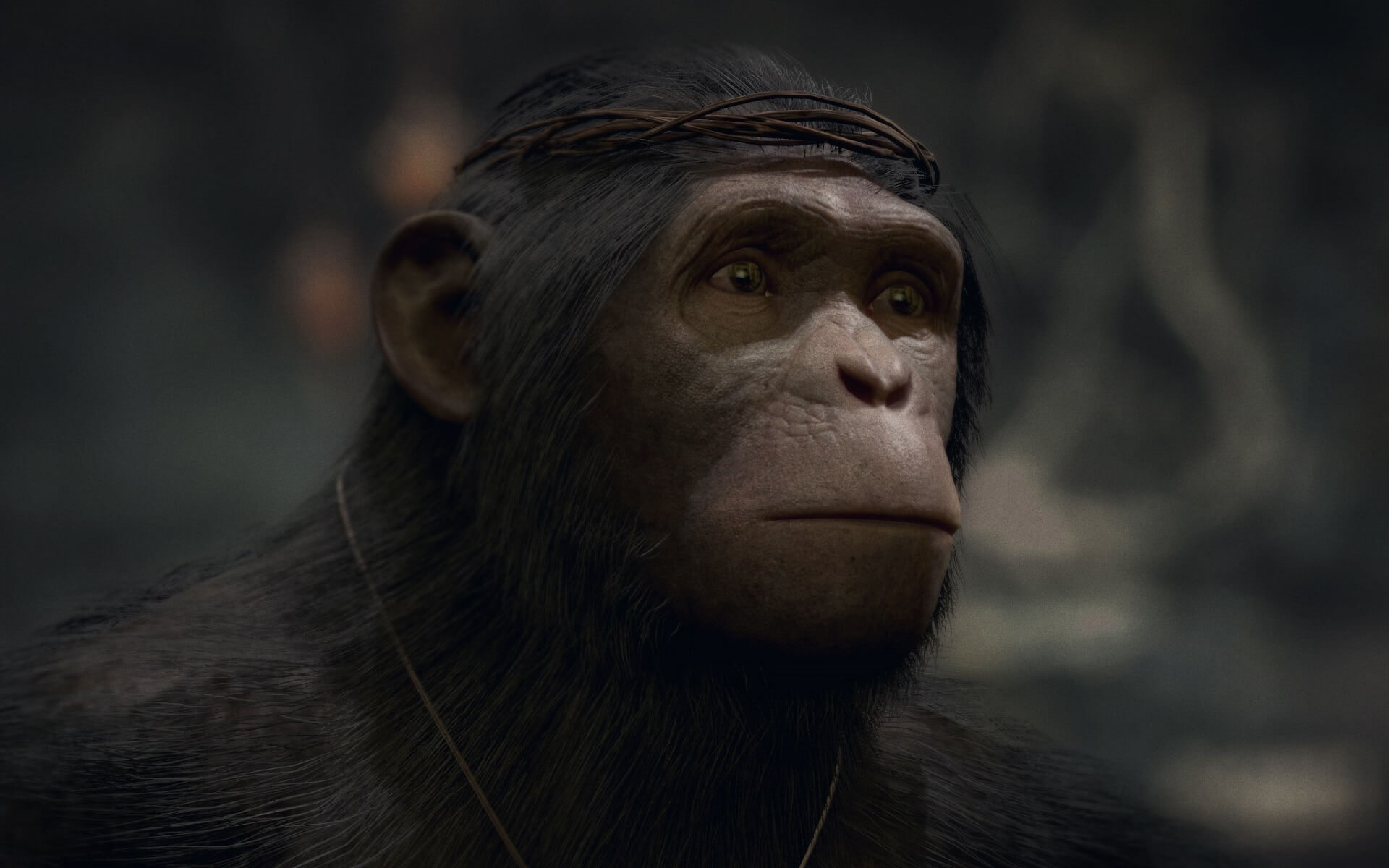 Planet Of Hte Apes