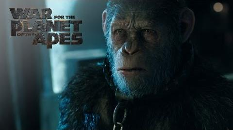 "War for the Planet of the Apes ""Witness The End"" TV Commercial 20th Century Fox"