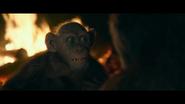 WPOTA Bad Ape tells Caesar he's been running to survive