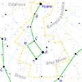 600px-Ursa Minor constellation map.png