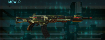 Temperate forest lmg msw-r