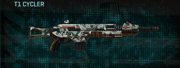 Northern forest assault rifle t1 cycler