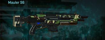 African forest shotgun mauler s6