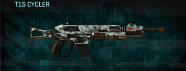 Northern forest assault rifle t1s cycler