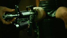 Bushmaster Carbine 2