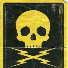 Death Proof skull poster.