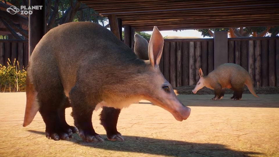 https://vignette.wikia.nocookie.net/planetzoo/images/5/5f/Aardvark.jpg/revision/latest?cb=20190830110338