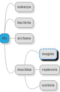 Magnis-taxa