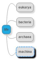 Machina-taxon