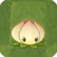 Lírio-Fertilizante