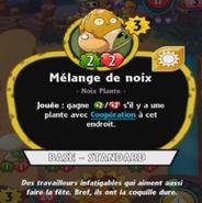 PlanteSolairePvZH Mélange de Noix