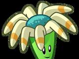 Boomerang Floral