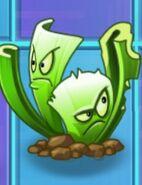 CeleryStalkerdegrade