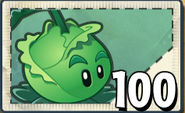 Cabbage-pultPvZ2SeedPacket