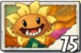 1Primal Sunflower Seed Packet