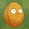 Wall-nut2-0