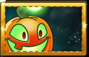 1Jack O' Lantern New Premium Seed Packet