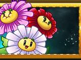 Guirlande de Fleurs