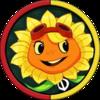 Solar FlareH-0
