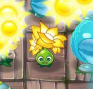 1Gold Bloom Finished Animation