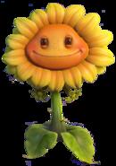 1HD Sunflower GW2