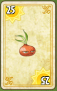 1Stunion Card